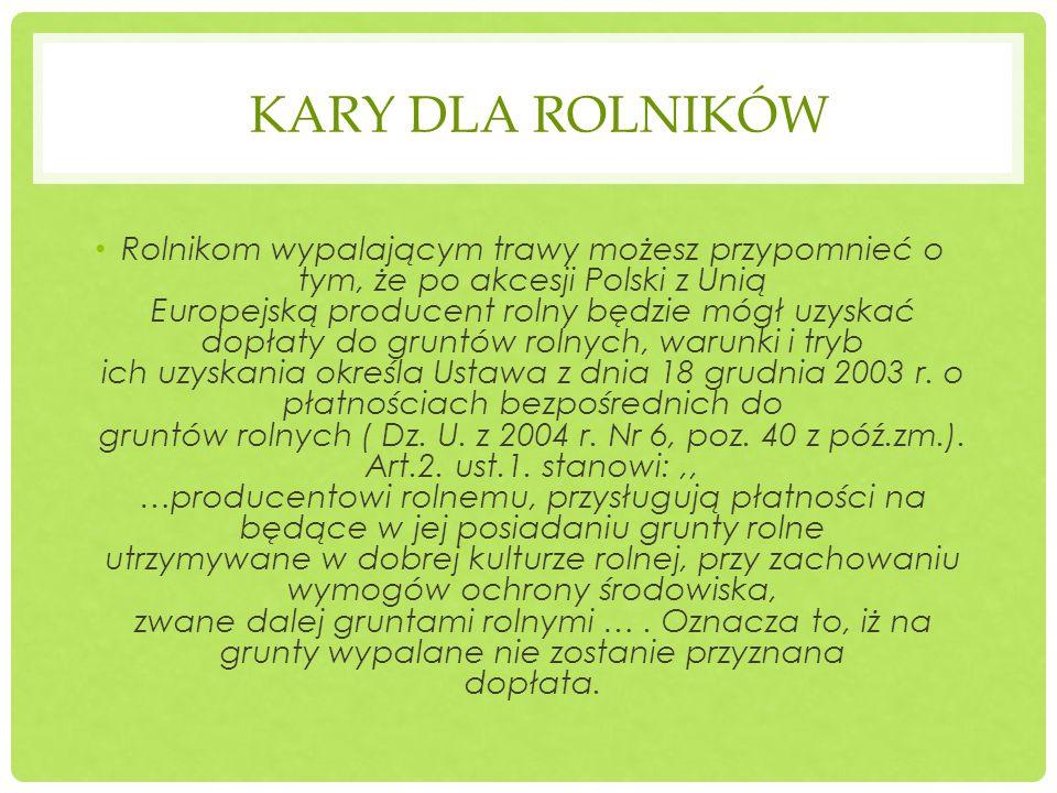 KARY DLA ROLNIKÓW Rolnikom wypalającym trawy możesz przypomnieć o tym, że po akcesji Polski z Unią Europejską producent rolny będzie mógł uzyskać dopł