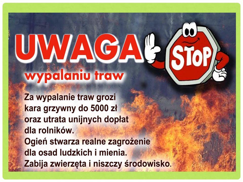 Błędnym spostrzeżeniem jest to iż pożary to problem gmin wiejskich, ponieważ tam jest najwięcej terenów zielonych, które narażone są na powstanie ognia.