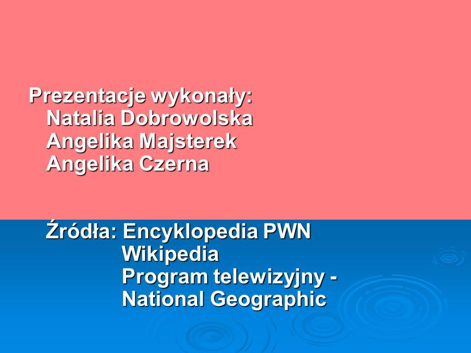 Prezentacje wykonały: Natalia Dobrowolska Angelika Majsterek Angelika Czerna Źródła: Encyklopedia PWN Wikipedia Program telewizyjny - National Geograp