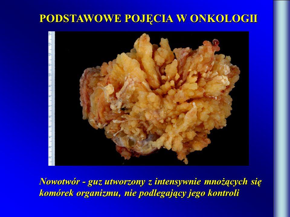 HPV HUMAN PAPILLOMA VIRUS Wirus jest mikroorganizmem o prostej budowie: 1.