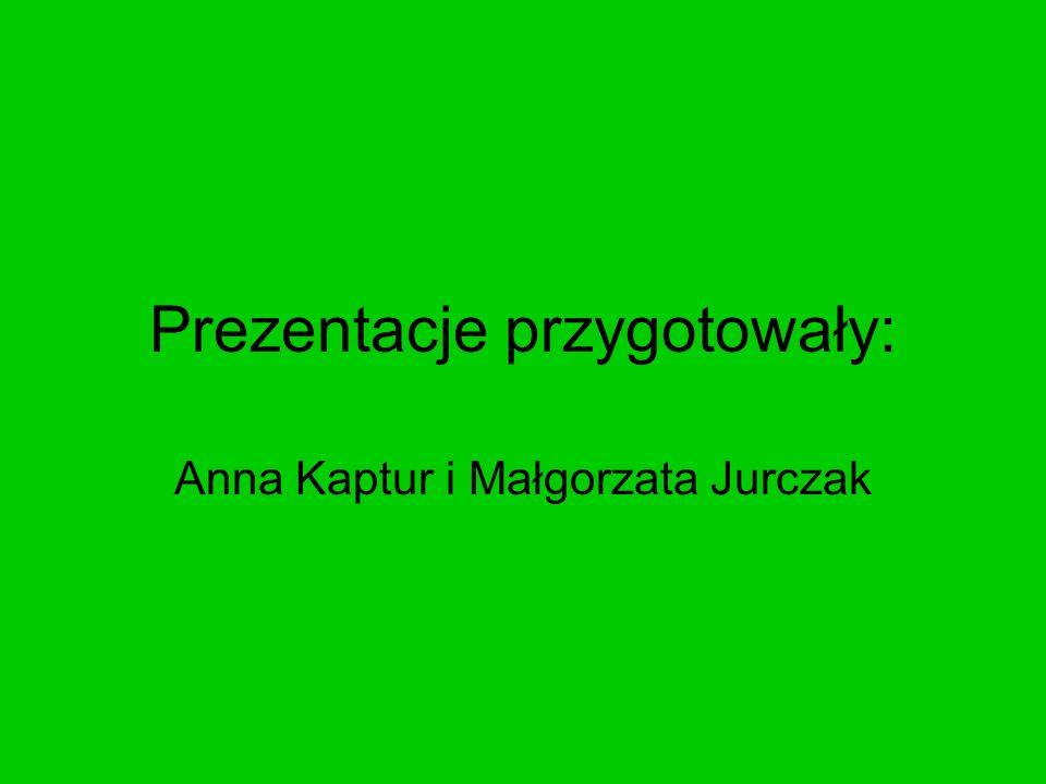 Prezentacje przygotowały: Anna Kaptur i Małgorzata Jurczak