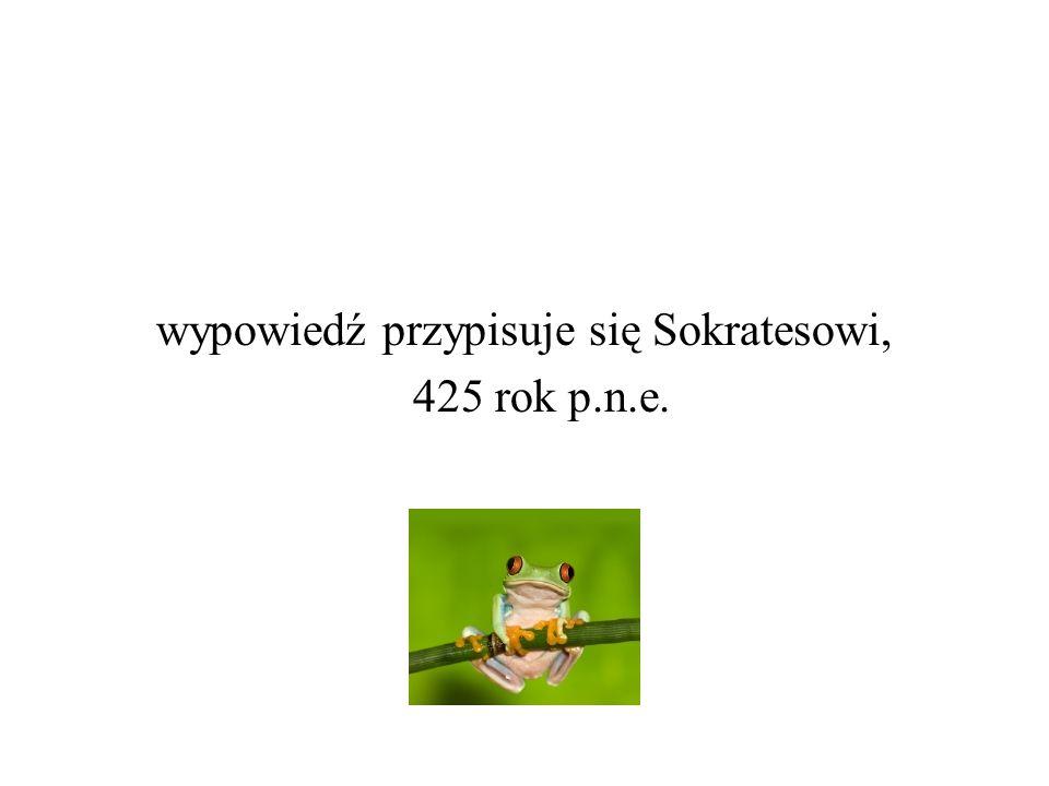 www.ine.com.pl