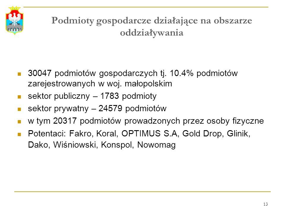 13 Podmioty gospodarcze działające na obszarze oddziaływania 30047 podmiotów gospodarczych tj. 10.4% podmiotów zarejestrowanych w woj. małopolskim sek