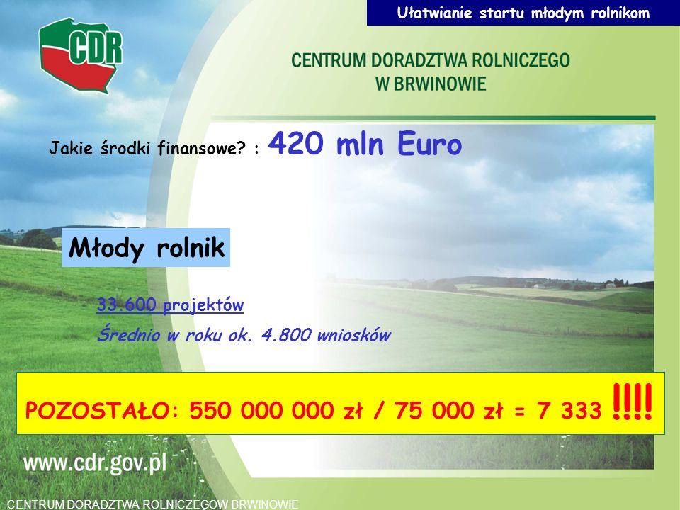Młody rolnik 33.600 projektów Średnio w roku ok. 4.800 wniosków Jakie środki finansowe? : 420 mln Euro POZOSTAŁO: 550 000 000 zł / 75 000 zł = 7 333 !