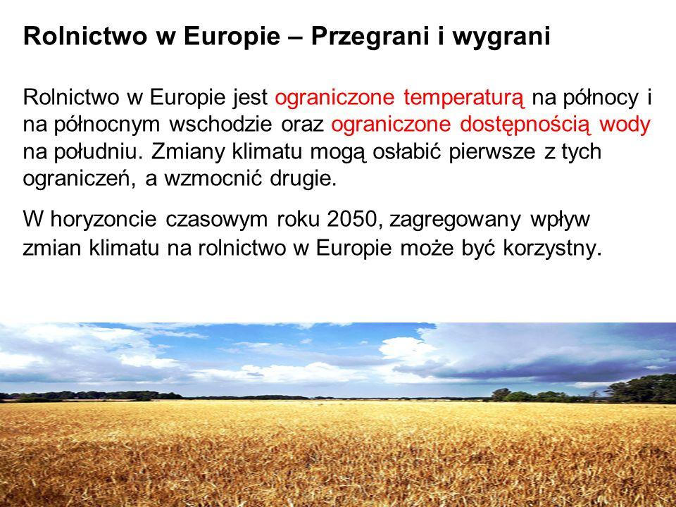 1/13/201410 Rolnictwo w Europie – Przegrani i wygrani Rolnictwo w Europie jest ograniczone temperaturą na północy i na północnym wschodzie oraz ograni