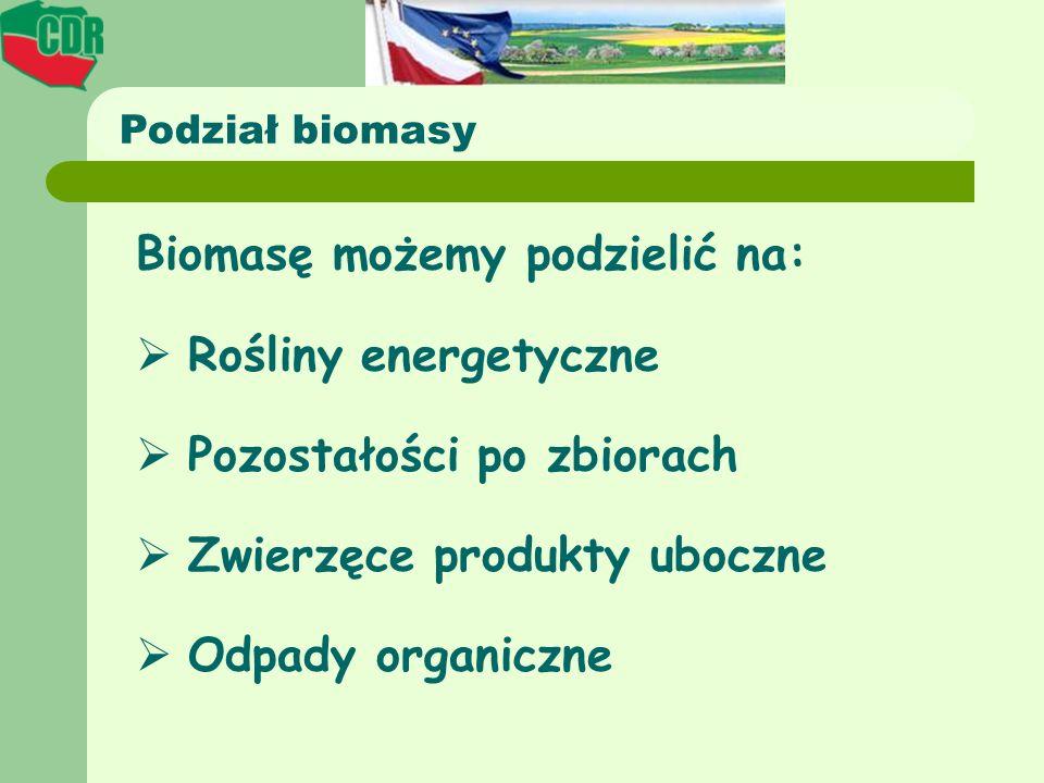 Biomasę możemy podzielić na: Rośliny energetyczne Pozostałości po zbiorach Zwierzęce produkty uboczne Odpady organiczne Podział biomasy