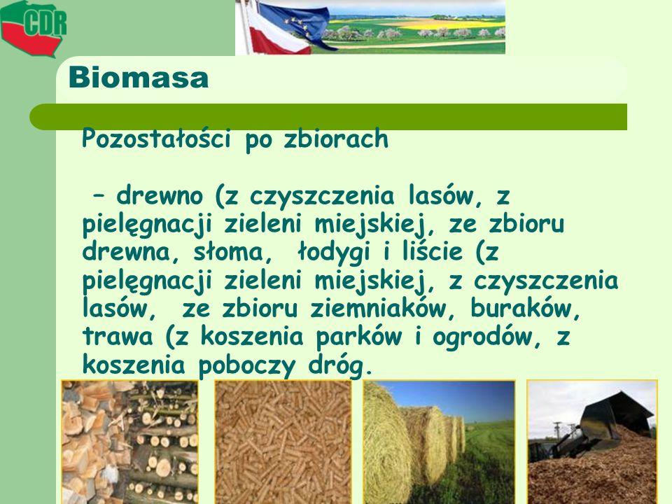 Biomasa Pozostałości po zbiorach – drewno (z czyszczenia lasów, z pielęgnacji zieleni miejskiej, ze zbioru drewna, słoma, łodygi i liście (z pielęgnac