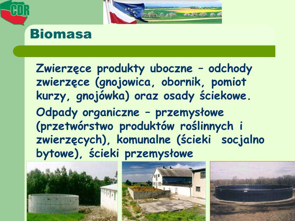 Biomasa Zwierzęce produkty uboczne – odchody zwierzęce (gnojowica, obornik, pomiot kurzy, gnojówka) oraz osady ściekowe. Odpady organiczne – przemysło