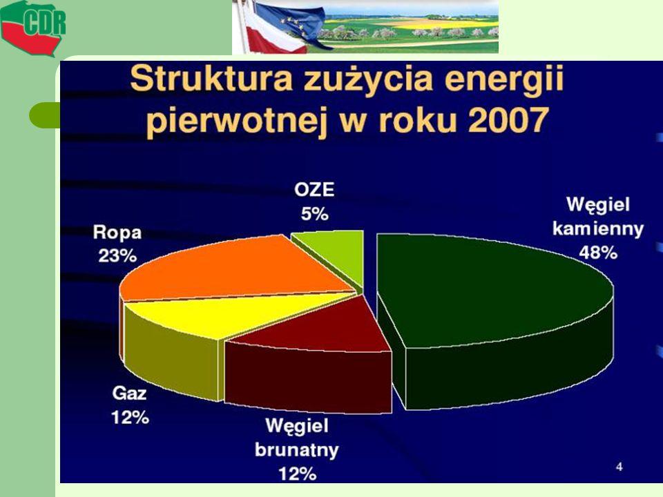 ODNAWIALE ŹRÓDŁA ENERGII W 2006 R Biomasa stała91,2 % Energia promieniowania słonecznego0 % Energia wody3,5 % Energia wiatru0,4 % Biogaz1,2 % Biopaliwa3,3 % Energia geotermalna0,3 % Odpady komunalne0,01 %
