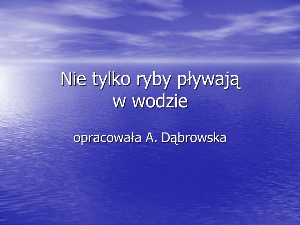 Nie tylko ryby pływają w wodzie opracowała A. Dąbrowska