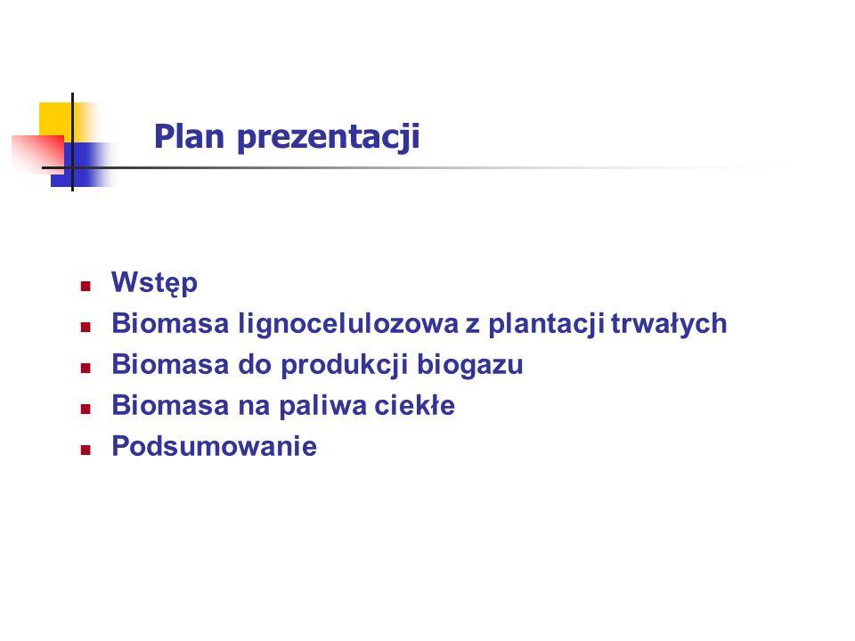 Plan prezentacji Wstęp Biomasa lignocelulozowa z plantacji trwałych Biomasa do produkcji biogazu Biomasa na paliwa ciekłe Podsumowanie
