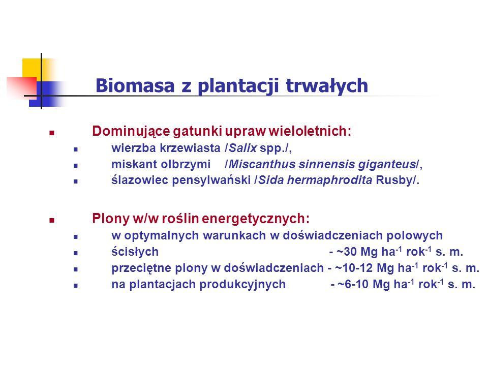 Biomasa z plantacji trwałych Dominujące gatunki upraw wieloletnich: wierzba krzewiasta /Salix spp./, miskant olbrzymi /Miscanthus sinnensis giganteus/, ślazowiec pensylwański /Sida hermaphrodita Rusby/.