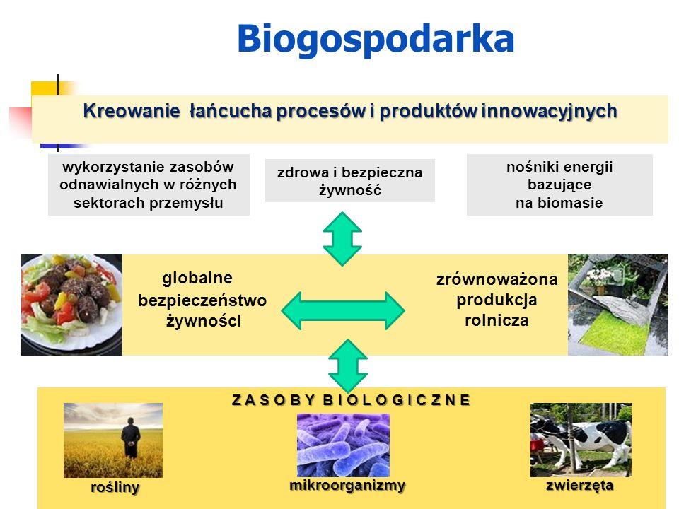 Kreowanie łańcucha procesów i produktów innowacyjnych globalne bezpieczeństwo żywności zrównoważona produkcja rolnicza Z A S O B Y B I O L O G I C Z N