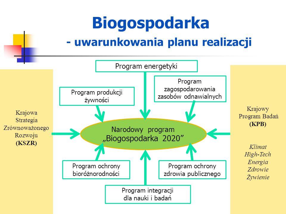 Krajowa Strategia Zrównoważonego Rozwoju (KSZR) Krajowy Program Badań (KPB) Klimat High-Tech Energia Zdrowie Żywienie Program energetyki Program produ