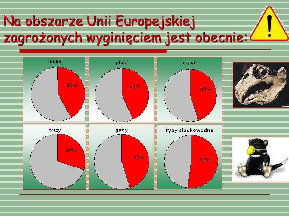 Na obszarze Unii Europejskiej zagrożonych wyginięciem jest obecnie: