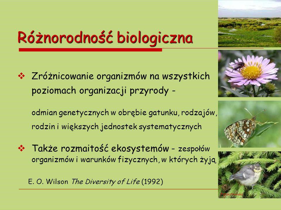 Różnorodność biologiczna Zróżnicowanie organizmów na wszystkich poziomach organizacji przyrody - odmian genetycznych w obrębie gatunku, rodzajów, rodz