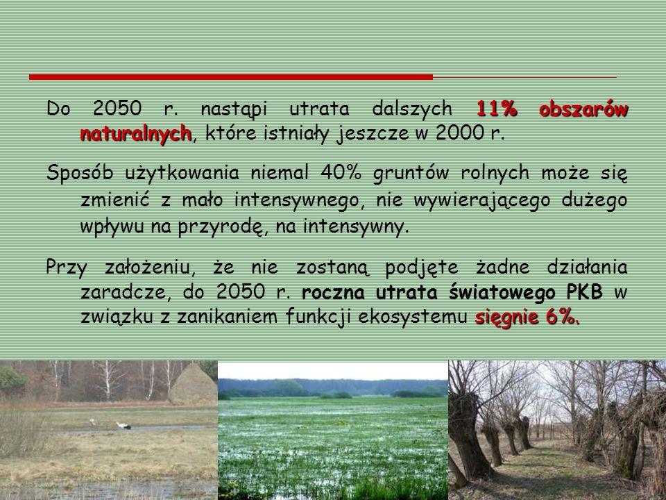 11% obszarów naturalnych Do 2050 r. nastąpi utrata dalszych 11% obszarów naturalnych, które istniały jeszcze w 2000 r. Sposób użytkowania niemal 40% g