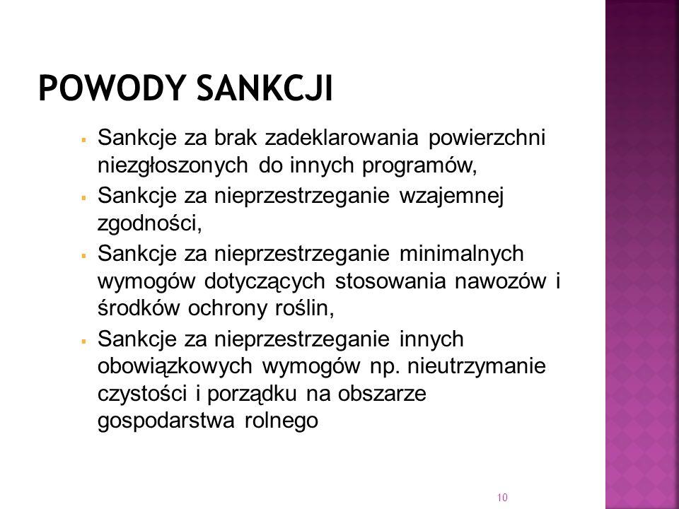 Sankcje za brak zadeklarowania powierzchni niezgłoszonych do innych programów, Sankcje za nieprzestrzeganie wzajemnej zgodności, Sankcje za nieprzestr