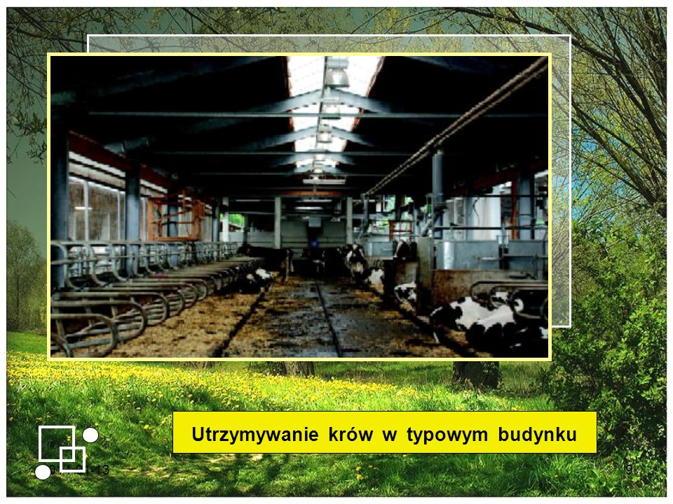 2014-01-139 Utrzymywanie krów w typowym budynku