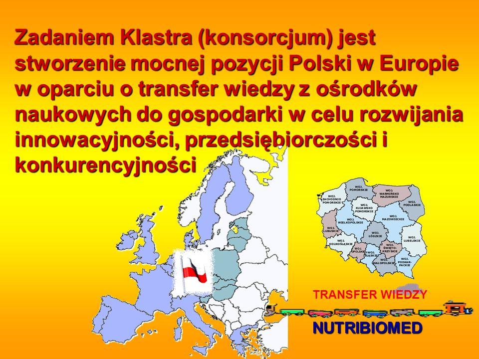 Zadaniem Klastra (konsorcjum) jest stworzenie mocnej pozycji Polski w Europie w oparciu o transfer wiedzy z ośrodków naukowych do gospodarki w celu ro
