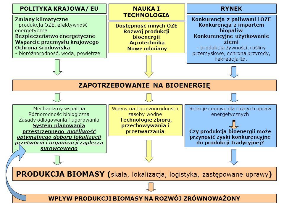 POLITYKA KRAJOWA/ EUNAUKA I TECHNOLOGIA RYNEK Zmiany klimatyczne - produkcja OZE, efektywność energetyczna Bezpieczeństwo energetyczne Wsparcie przemysłu krajowego Ochrona środowiska - bioróżnorodność, woda, powietrze Dostępność innych OZE Rozwój produkcji bioenergii Agrotechnika Nowe odmiany Konkurencja z paliwami i OZE Konkurencja z importem biopaliw Konkurencyjne użytkowanie ziemi - produkcja żywności, rośliny przemysłowe, ochrona przyrody, rekreacja itp.