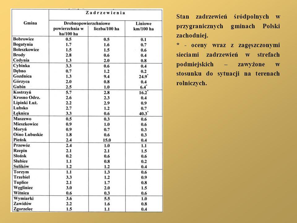 Stan zadrzewień śródpolnych w przygranicznych gminach Polski zachodniej. * - oceny wraz z zagęszczonymi sieciami zadrzewień w strefach podmiejskich –