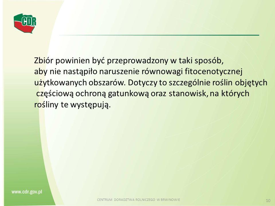 CENTRUM DORADZTWA ROLNICZEGO W BRWINOWIE 10 Zbiór powinien być przeprowadzony w taki sposób, aby nie nastąpiło naruszenie równowagi fitocenotycznej uż