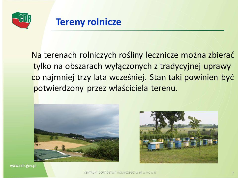 CENTRUM DORADZTWA ROLNICZEGO W BRWINOWIE 7 Na terenach rolniczych rośliny lecznicze można zbierać tylko na obszarach wyłączonych z tradycyjnej uprawy