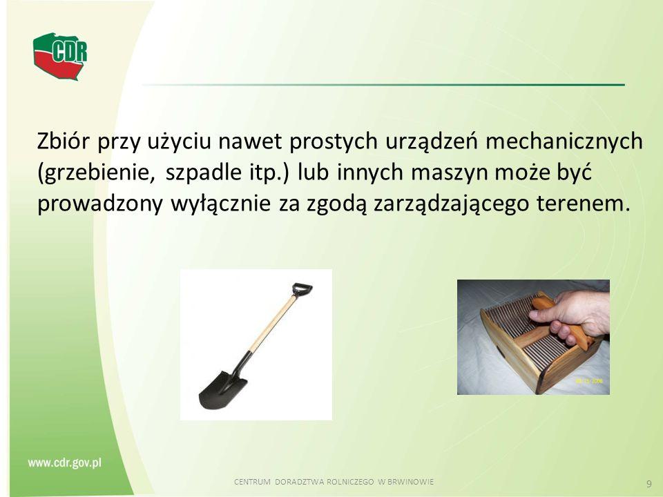 CENTRUM DORADZTWA ROLNICZEGO W BRWINOWIE 10 Zbiór powinien być przeprowadzony w taki sposób, aby nie nastąpiło naruszenie równowagi fitocenotycznej użytkowanych obszarów.