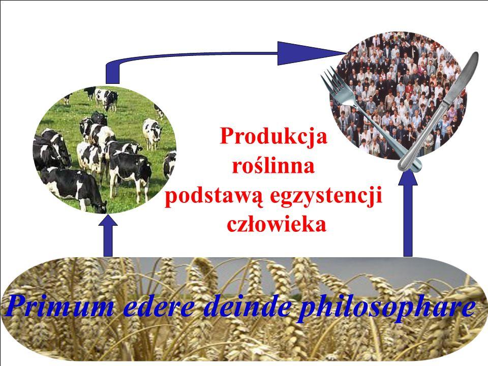 Produkcja roślinna podstawą egzystencji człowieka Primum edere deinde philosophare