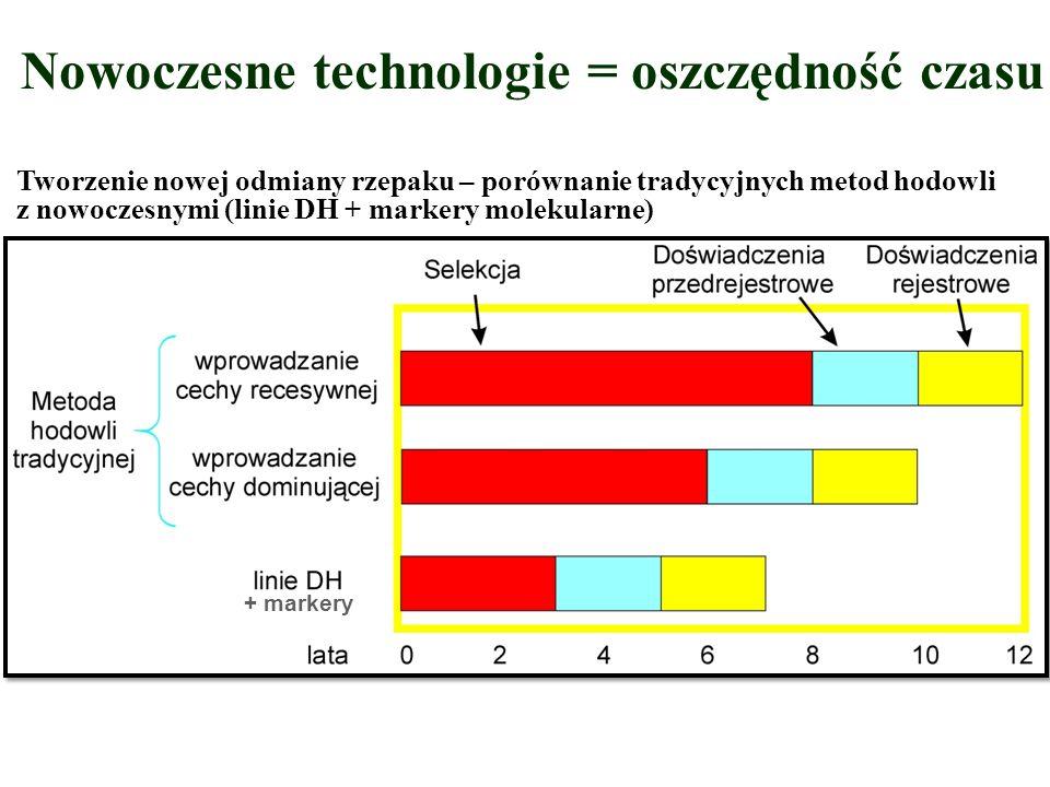 Nowoczesne technologie = oszczędność czasu Tworzenie nowej odmiany rzepaku – porównanie tradycyjnych metod hodowli z nowoczesnymi (linie DH + markery