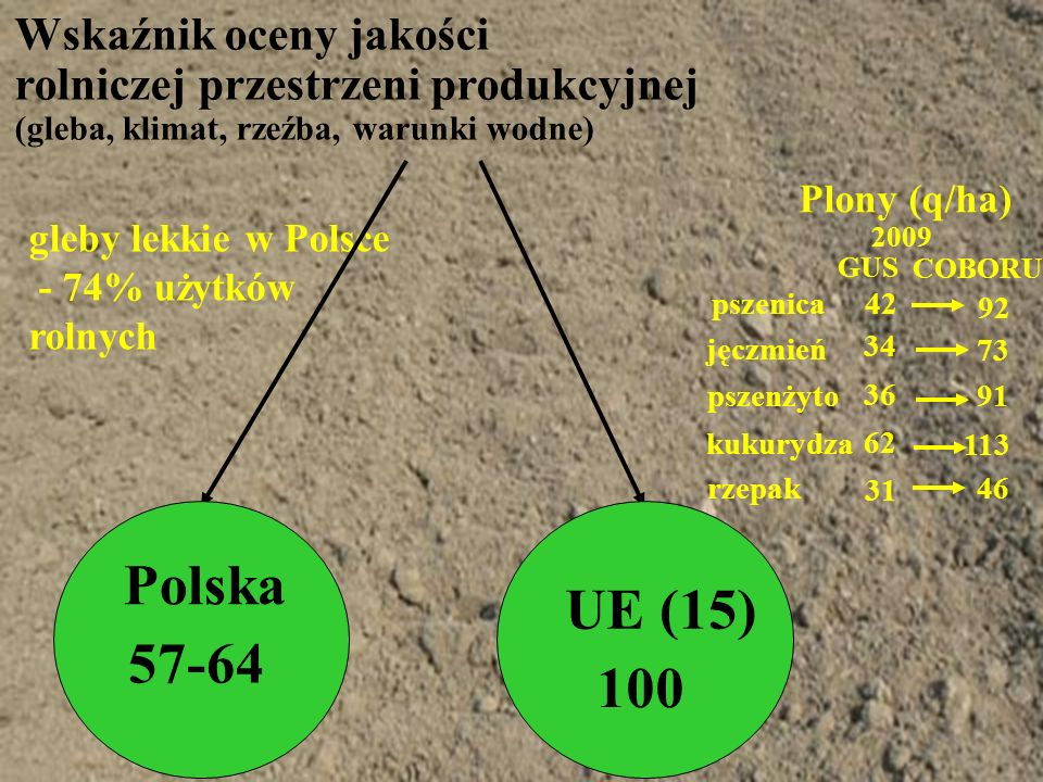 Wskaźnik oceny jakości rolniczej przestrzeni produkcyjnej (gleba, klimat, rzeźba, warunki wodne) gleby lekkie w Polsce - 74% użytków rolnych Plony (q/