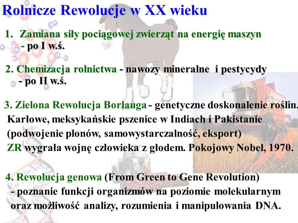Rolnicze Rewolucje w XX wieku 1.Zamiana siły pociągowej zwierząt na energię maszyn - po I w.ś. - po I w.ś. 2.Chemizacja rolnictwa - nawozy mineralne i