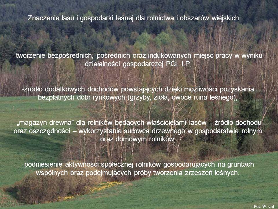 Znaczenie lasu i gospodarki leśnej dla rolnictwa i obszarów wiejskich -tworzenie bezpośrednich, pośrednich oraz indukowanych miejsc pracy w wyniku działalności gospodarczej PGL LP, -źródło dodatkowych dochodów powstających dzięki możliwości pozyskania bezpłatnych dóbr rynkowych (grzyby, zioła, owoce runa leśnego), -magazyn drewna dla rolników będących właścicielami lasów – źródło dochodu oraz oszczędności – wykorzystanie surowca drzewnego w gospodarstwie rolnym oraz domowym rolników, -podniesienie aktywności społecznej rolników gospodarujących na gruntach wspólnych oraz podejmujących próby tworzenia zrzeszeń leśnych.
