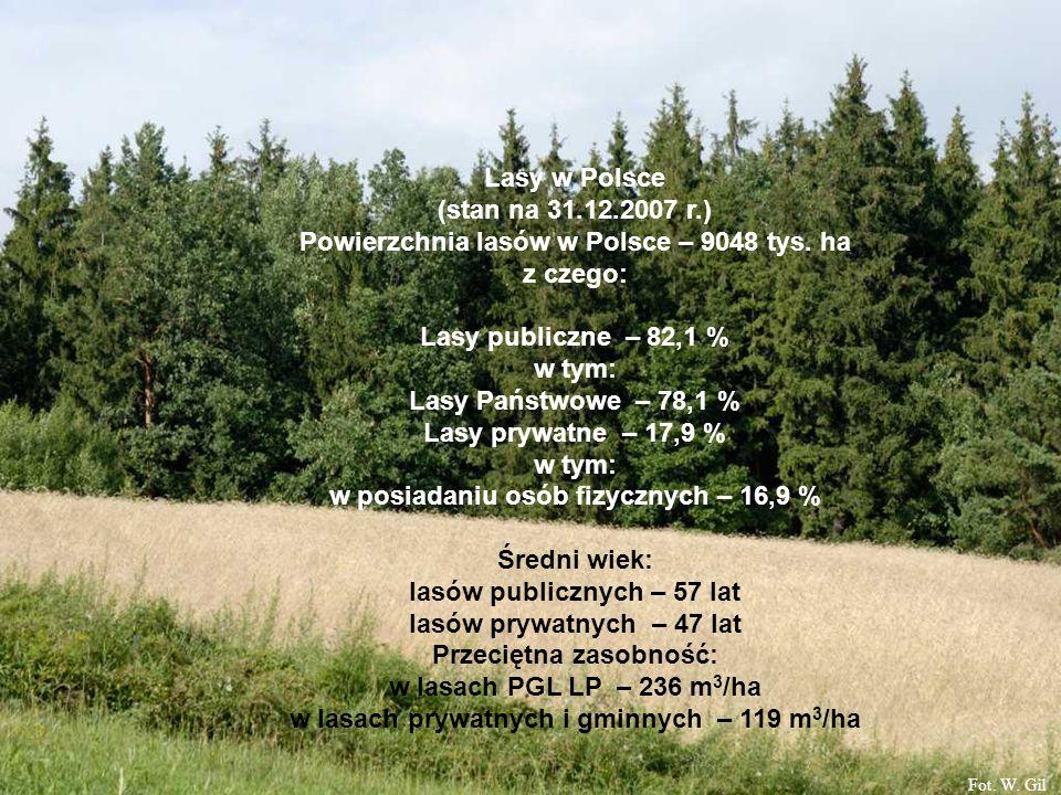 Lasy w Polsce (stan na 31.12.2007 r.) Powierzchnia lasów w Polsce – 9048 tys. ha z czego: Lasy publiczne – 82,1 % w tym: Lasy Państwowe – 78,1 % Lasy