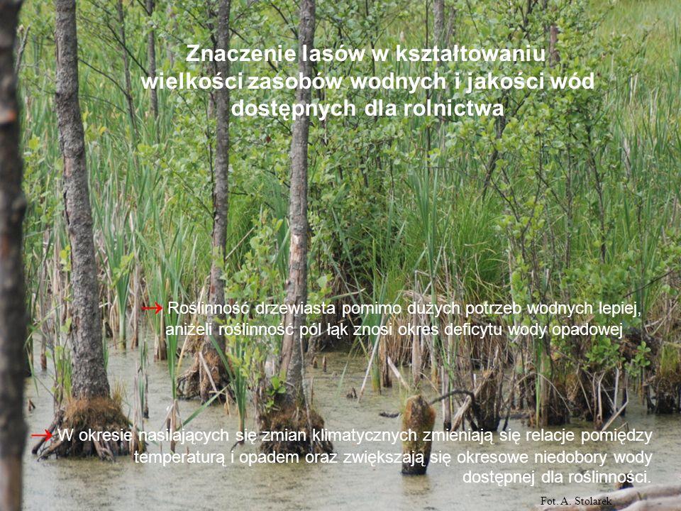 Wodochronne właściwości lasu: zwiększony opad nad lasem wyrównany odpływ ze zlewni w wyniku retencyjnych właściwości lasu: intercepcji opadu, wilgotności ściółki i gleby, retencji wody powierzchniowej i śniegu, retencji wód gruntowych efektem retencyjnych właściwości lasu jest zamiana odpływu powierzchniowego na gruntowy co powoduje zwiększenie dostępności i poprawę jakości zasobów wód powierzchniowych i podziemnych Fot.