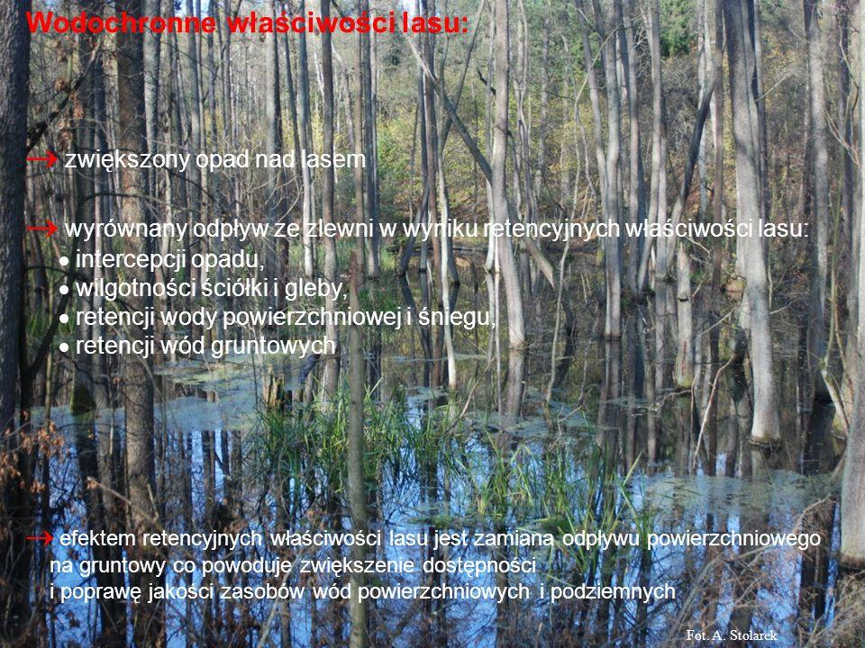 Wodochronne właściwości lasu: zwiększony opad nad lasem wyrównany odpływ ze zlewni w wyniku retencyjnych właściwości lasu: intercepcji opadu, wilgotno