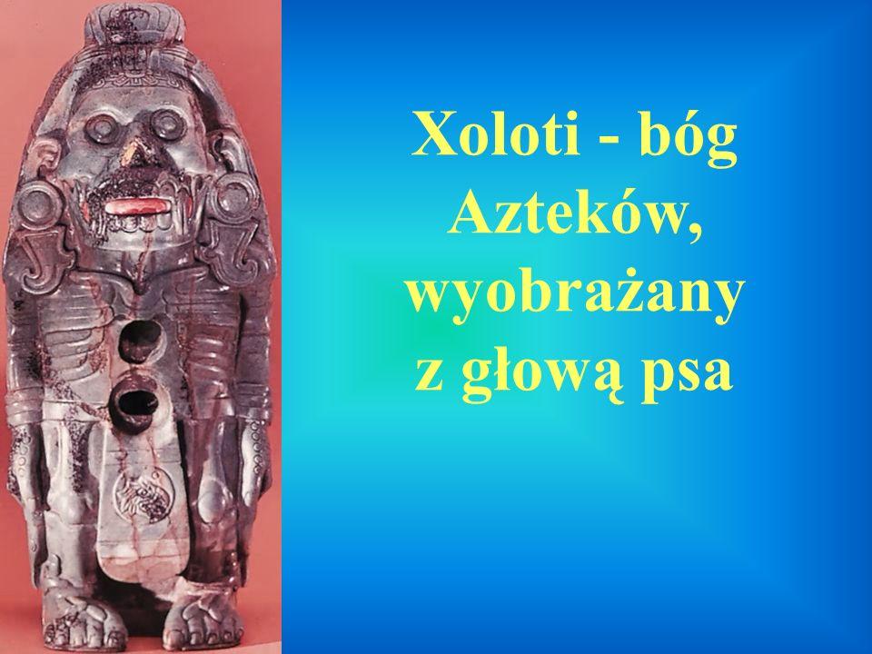 Xoloti - bóg Azteków, wyobrażany z głową psa