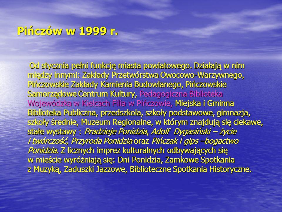 Pińczów w 1999 r. Od stycznia pełni funkcję miasta powiatowego. Działają w nim między innymi: Zakłady Przetwórstwa Owocowo-Warzywnego, Pińczowskie Zak