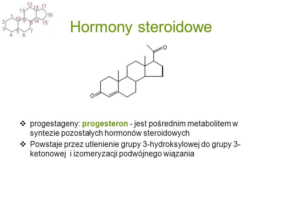 Hormony steroidowe progestageny: progesteron - jest pośrednim metabolitem w syntezie pozostałych hormonów steroidowych Powstaje przez utlenienie grupy