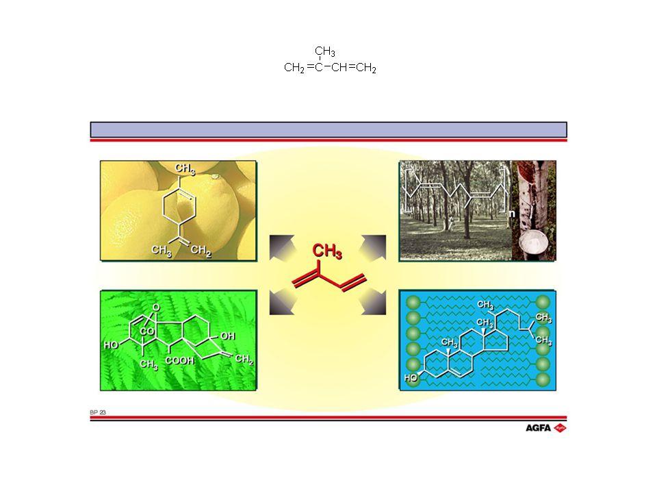 Pirofosforan izopentenylu (IPP)Pirofosforan 3,3-dimetyloallilu izopren (2-metyl-1,3 butadien) PP = -P 2 O 7
