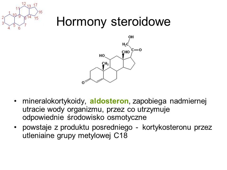 Hormony steroidowe mineralokortykoidy, aldosteron, zapobiega nadmiernej utracie wody organizmu, przez co utrzymuje odpowiednie środowisko osmotyczne p
