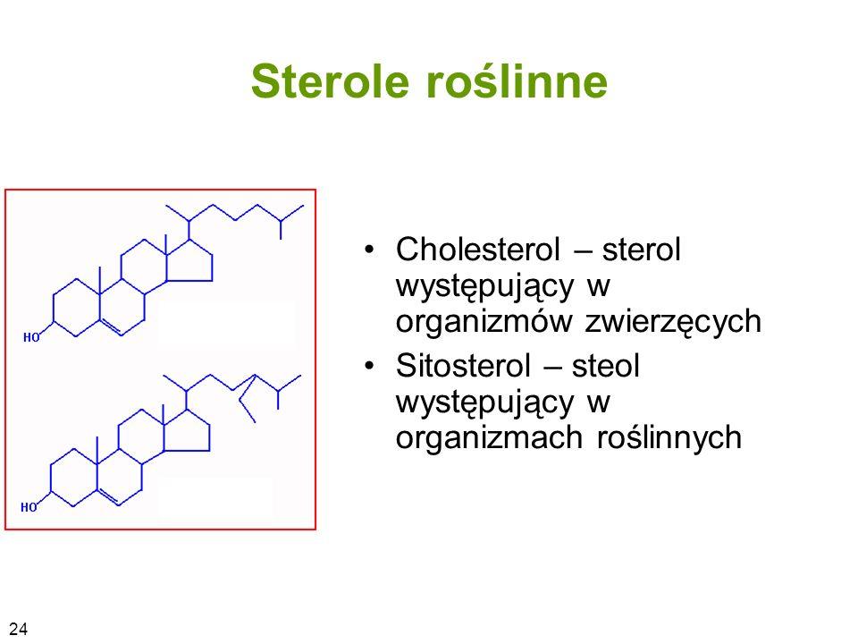 Sterole roślinne Cholesterol – sterol występujący w organizmów zwierzęcych Sitosterol – steol występujący w organizmach roślinnych 24