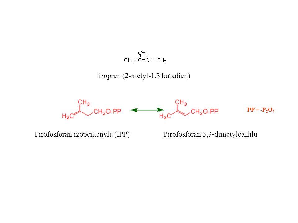 Kalcytriol – pochodna cholesterolu 7-dehydrocholesterol prowitamina D 3 reakcja UV prewitamina D 3 spontaniczna izomeryzacja witamina D 3 hydroksylacja kalcytriol 14