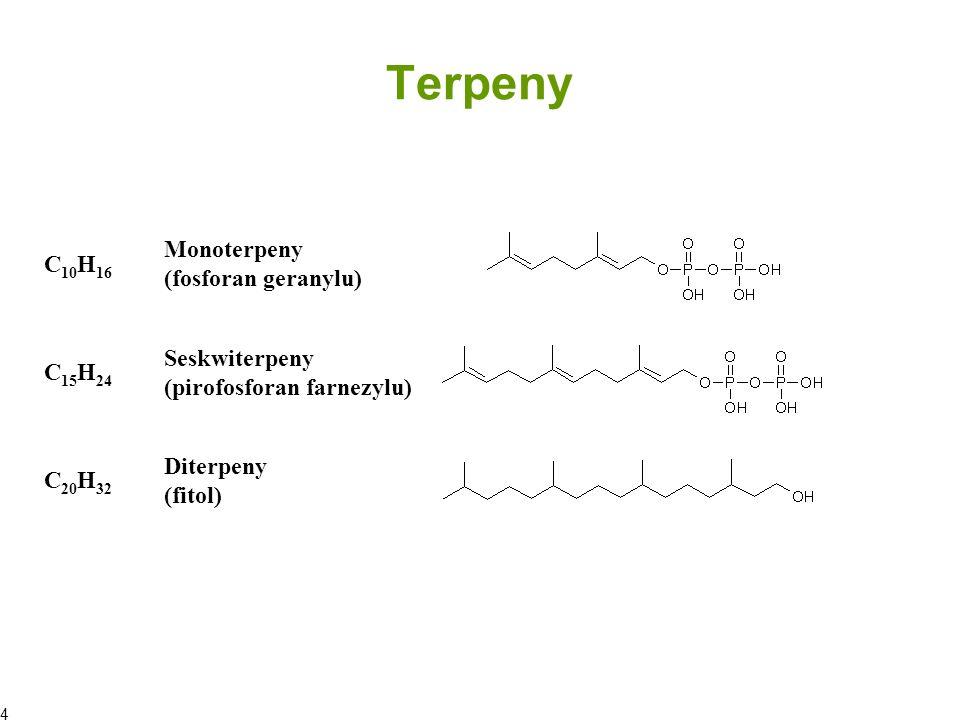 Terpeny C 30 H 48 Triterpeny (skwalen) C 40 H 64 Tetraterpeny (beta-karoten) (C 5 H 8 ) x Politerpeny (dolichol) 6