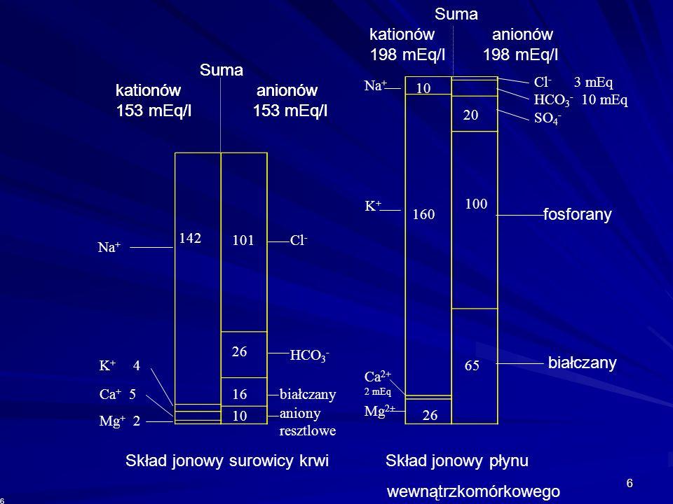 6 142 101 26 16 10 Skład jonowy surowicy krwi Skład jonowy płynu wewnątrzkomórkowego Suma kationów anionów 153 mEq/l Suma kationów anionów 153 mEq/l S