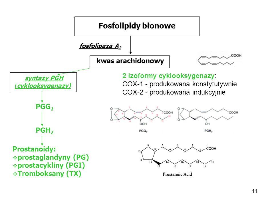 11 Fosfolipidy błonowe fosfolipaza A 2 kwas arachidonowy syntazy PGH ( cyklooksygenazy) PGG 2 PGH 2 Prostanoidy: prostaglandyny (PG) prostacykliny (PG