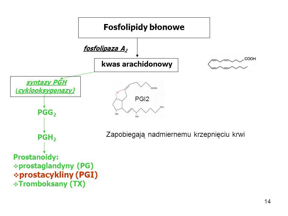 14 Fosfolipidy błonowe fosfolipaza A 2 kwas arachidonowy syntazy PGH ( cyklooksygenazy) PGG 2 PGH 2 Prostanoidy: prostaglandyny (PG) prostacykliny (PG