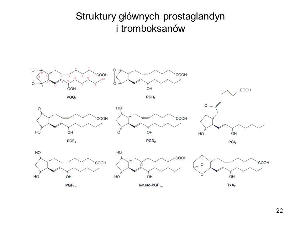 22 Struktury głównych prostaglandyn i tromboksanów