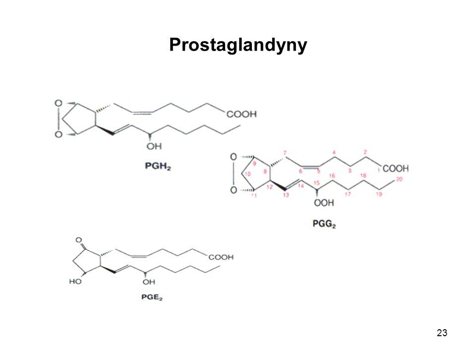 23 Prostaglandyny